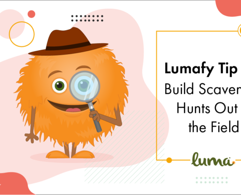 Lumafy Tip 25